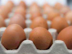 Don't put all your traffic eggs in the SEO basket.